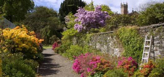 ARDMADDY CASTLE GARDENS: OPEN FOR THE SCOTTISH RHODODENDRON FESTIVAL